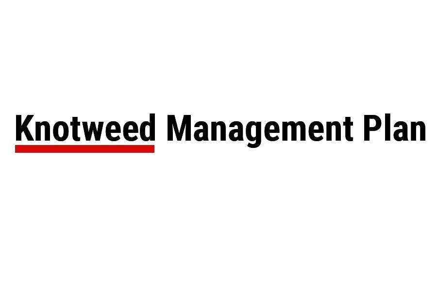 Knotweed Management Plan Logo