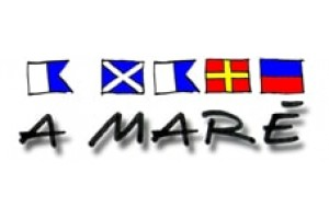 A Mare Logo